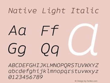 Native Light Italic Version 1.000;PS 001.000;hotconv 1.0.88;makeotf.lib2.5.64775 Font Sample
