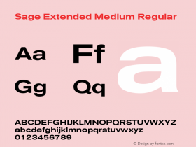 Sage Extended Medium Regular July 7, 1992; 1.01 Font Sample