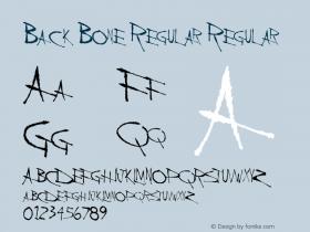 Back Bone Regular Regular Altsys Metamorphosis:11/13/94图片样张