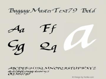 BaggageMasterText79 Bold Altsys Metamorphosis:10/28/94图片样张