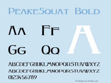 PeakeSquat Bold Macromedia Fontographer 4.1 12/20/97 Font Sample