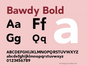 Bawdy Bold 001.000 Font Sample
