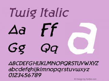 Twig Italic Version 1.000;PS 001.000;hotconv 1.0.38图片样张