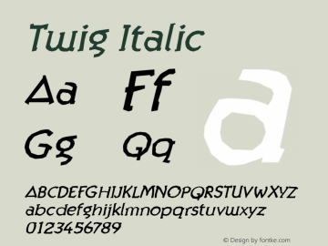 Twig Italic Version 001.000图片样张