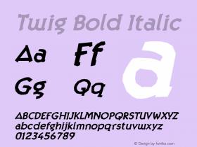 Twig Bold Italic Version 1.000;PS 001.000;hotconv 1.0.38 Font Sample