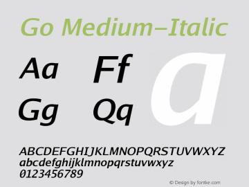 Go Medium-Italic Version 2.004; ttfautohint ( Font Sample