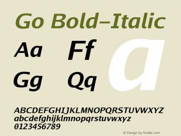 Go Bold-Italic Version 2.004; ttfautohint ( Font Sample