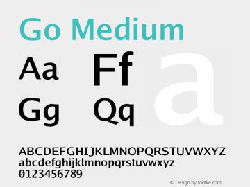 Go Medium Version 2.004; ttfautohint ( Font Sample