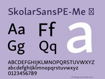 SkolarSansPE-Me ☞ Version 2.004;PS 2.003;hotconv 1.0.88;makeotf.lib2.5.647800; ttfautohint (v1.5);com.myfonts.easy.rosetta.skolar-sans-pe.medium.wfkit2.version.4Ft5 Font Sample