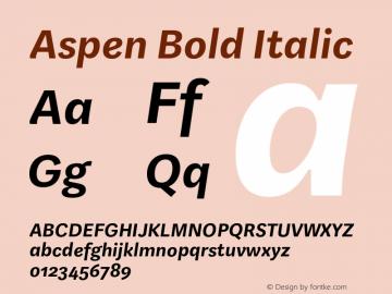 Aspen Bold Italic Version 1.001图片样张