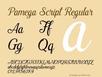 Pamega Script Regular Version 1.000图片样张