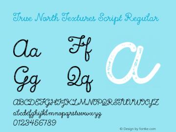 True North Textures Script Regular Version 1.000;PS 002.000;hotconv 1.0.70;makeotf.lib2.5.58329 Font Sample
