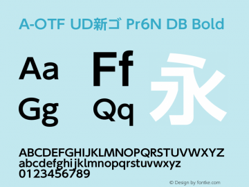 A-OTF UD新ゴ Pr6N DB Bold Version 2.001;PS 2;hotconv 1.0.57;makeotf.lib2.0.21895 Font Sample
