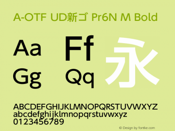 A-OTF UD新ゴ Pr6N M Bold Version 2.001;PS 2;hotconv 1.0.57;makeotf.lib2.0.21895 Font Sample