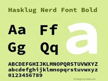 Hasklug Nerd Font Bold Version 2.010;PS 1.0;hotconv 1.0.88;makeotf.lib2.5.647800 Font Sample