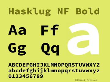 Hasklug NF Bold Version 2.010;PS 1.0;hotconv 1.0.88;makeotf.lib2.5.647800 Font Sample