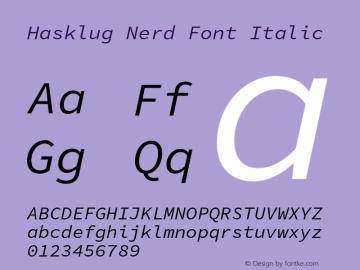 Hasklug Nerd Font Italic Version 1.030;PS 1.0;hotconv 1.0.88;makeotf.lib2.5.647800 Font Sample
