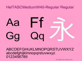 HeiTASCMediumW40-Regular Regular Version 1.00 Font Sample