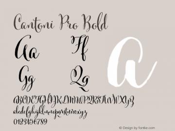 Cantoni Pro Bold ☞ Version 1.000; ttfautohint (v0.95) -d;com.myfonts.easy.debi-sementelli.cantoni.pro-bold.wfkit2.version.4h1L Font Sample