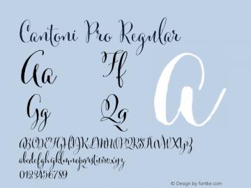 Cantoni Pro Regular ☞ Version 1.000; ttfautohint (v0.95) -d;com.myfonts.easy.debi-sementelli.cantoni.pro-regular.wfkit2.version.4h3S Font Sample