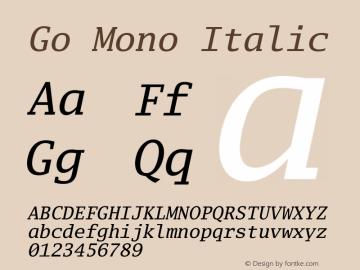 Go Mono Italic Version 2.004 Font Sample