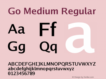 Go Medium Regular Version 2.004 Font Sample