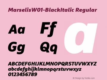 MarselisW01-BlackItalic Regular Version 7.504图片样张