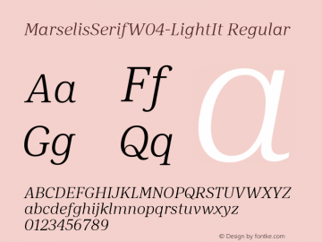 MarselisSerifW04-LightIt Regular Version 7.504图片样张