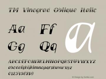 TM Vinograd Oblique Italic Version 001.000图片样张