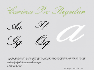 Carina Pro Regular Version 1.0 Font Sample