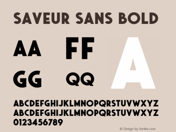 Saveur Sans Bold Version 1.000;PS 001.000;hotconv 1.0.88;makeotf.lib2.5.64775 Font Sample