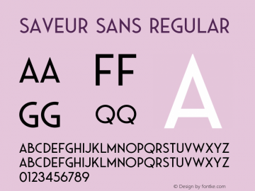 Saveur Sans Regular Version 1.000;PS 001.000;hotconv 1.0.88;makeotf.lib2.5.64775 Font Sample