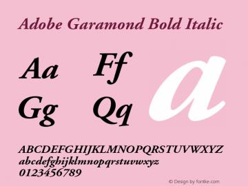 Adobe Garamond Bold Italic 001.001 Font Sample