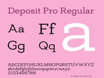Deposit Pro Regular Version 1.000图片样张