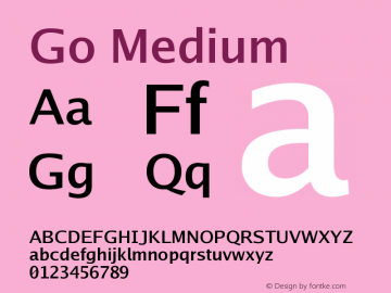 Go Medium Version 2.008; ttfautohint ( Font Sample