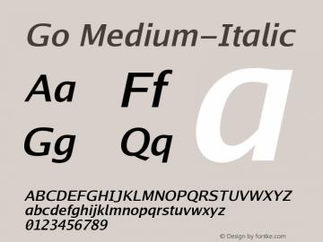 Go Medium-Italic Version 2.008; ttfautohint ( Font Sample