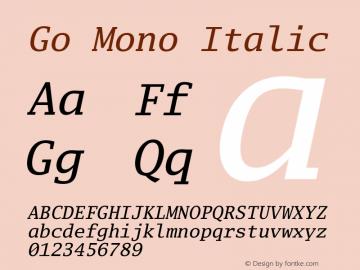 Go Mono Italic Version 2.008; ttfautohint (v1.6) Font Sample