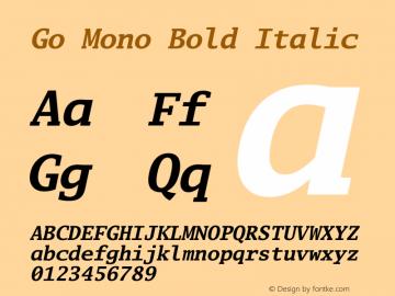 Go Mono Bold Italic Version 2.008; ttfautohint (v1.6) Font Sample