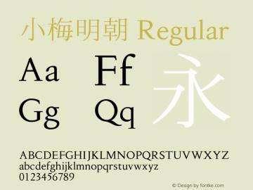 小梅明朝 Regular Version 001.000 Font Sample