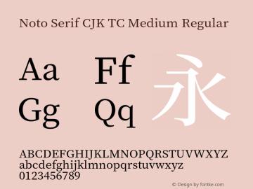 Noto Serif CJK TC Medium Regular Version 1.000;PS 1;hotconv 16.6.53;makeotf.lib2.5.65590 Font Sample