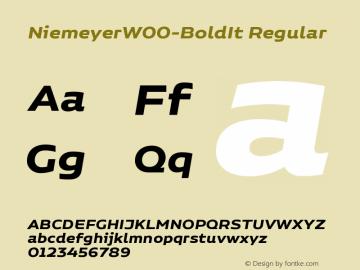 NiemeyerW00-BoldIt Regular Version 1.00 Font Sample