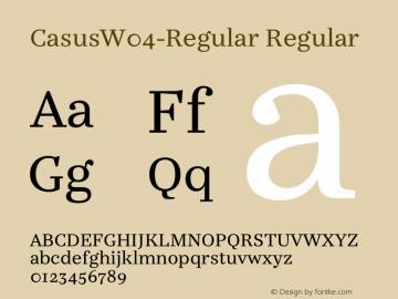 CasusW04-Regular Regular Version 7.504图片样张