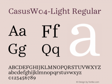 CasusW04-Light Regular Version 7.504 Font Sample