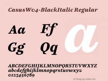 CasusW04-BlackItalic Regular Version 7.504图片样张