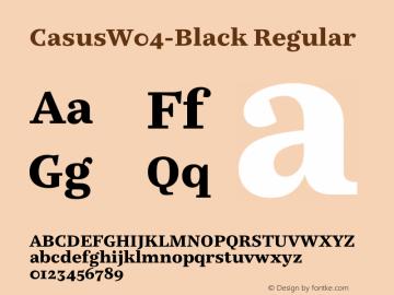 CasusW04-Black Regular Version 7.504 Font Sample