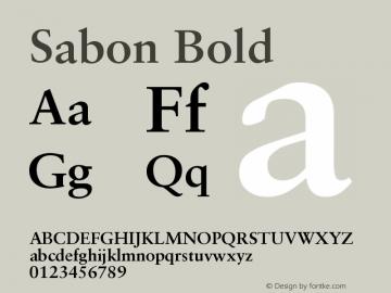 Sabon Bold Version 001.001图片样张