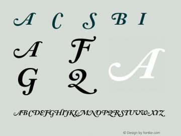 Adobe Caslon Bold Italic Swash Version 001.001图片样张