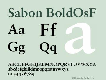 Sabon Bold Oldstyle Figures Version 001.001图片样张