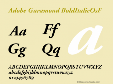Adobe Garamond Bold Italic Oldstyle Figures Version 001.002图片样张