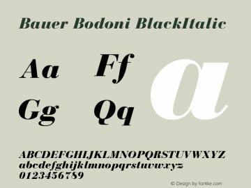 Bauer Bodoni CE Black Italic Version 001.000图片样张